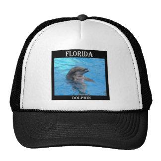 Delfín de la Florida Gorra
