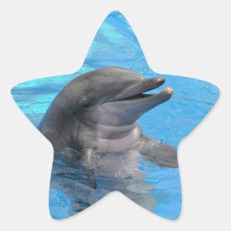 Delfín de la Florida Pegatina En Forma De Estrella