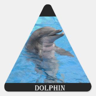 Delfín de la Florida Pegatina Triangular
