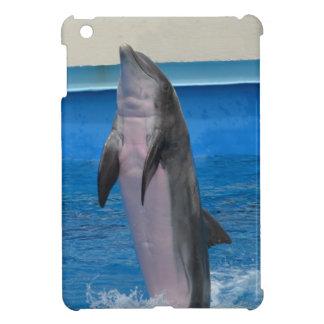 Delfín de Mississippi