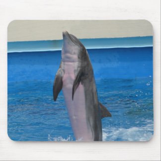 Delfín de Mississippi Tapete De Ratones