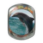 Delfín de salto jarrones de cristal