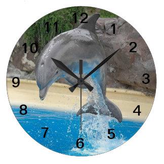 Delfín de salto relojes