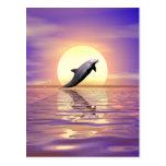 Delfín de Sun Postal