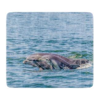 Delfín del amor de madre y tabla de cortar del
