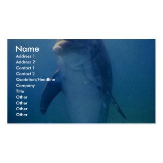 Delfín del bebé acuario de La Habana del La Cuba Tarjeta De Visita