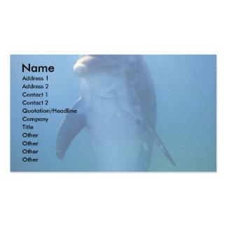 Delfín del bebé acuario de La Habana del La Cuba Plantilla De Tarjeta Personal
