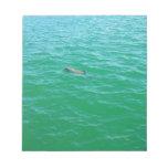 delfín del bebé bloc de papel