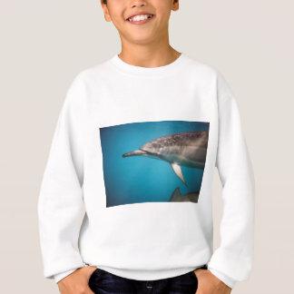 Delfín del hilandero sudadera