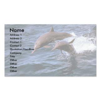 Delfín del hilandero tarjetas de visita