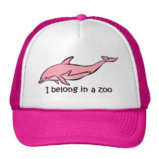 Delfín del parque zoológico gorras