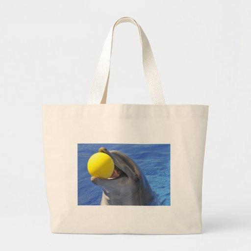 Delfín del retrato con una bola en la boca bolsa