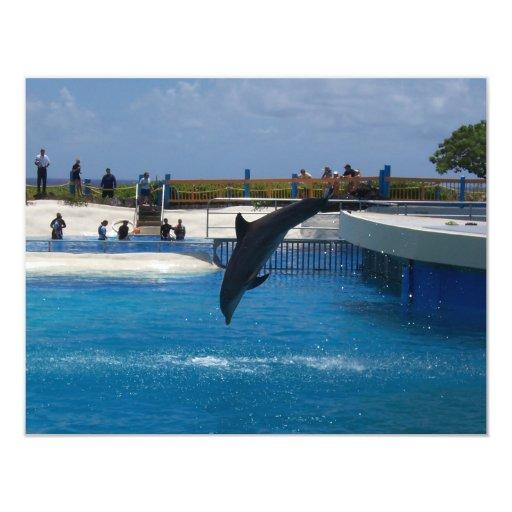 """Delfín del salto invitación 4.25"""" x 5.5"""""""