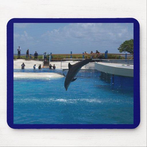 Delfín del salto tapete de raton
