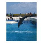 Delfín del salto tarjeta publicitaria