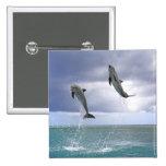 Delfin,Delphin,Grosser Tuemmler,Tursiops 2 2 Inch Square Button