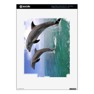 Delfin,Delphin,Grosser Tuemmler,Tursiops 4 iPad 3 Decals