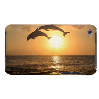 Delfin,Delphin,Grosser Tuemmler,Tursiops iPod Touch Case-Mate Case