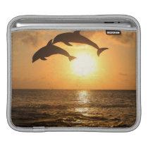 Delfin,Delphin,Grosser Tuemmler,Tursiops Sleeve For iPads