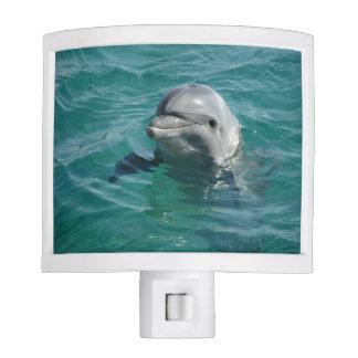 Delfín dulce en luz de la noche del agua lámparas de noche