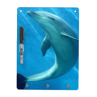 Delfín dulce pizarra