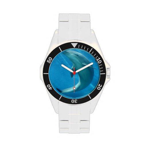 Delfín dulce reloj de mano