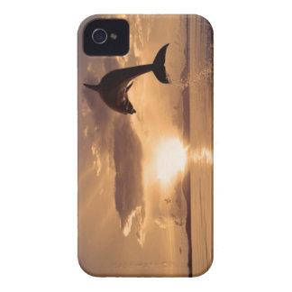 Delfín en el horizonte carcasa para iPhone 4 de Case-Mate