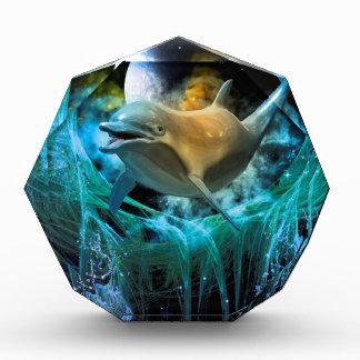 Delfín en el universo