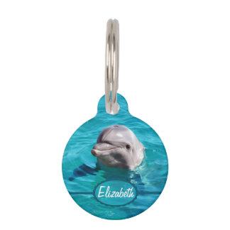 Delfín en foto del agua azul placas para mascotas