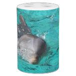 Delfín en fotografía del agua vaso para cepillos de dientes