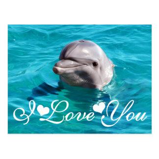 Delfín en imagen de la foto del agua azul te amo postales