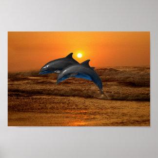 Delfín en la puesta del sol póster
