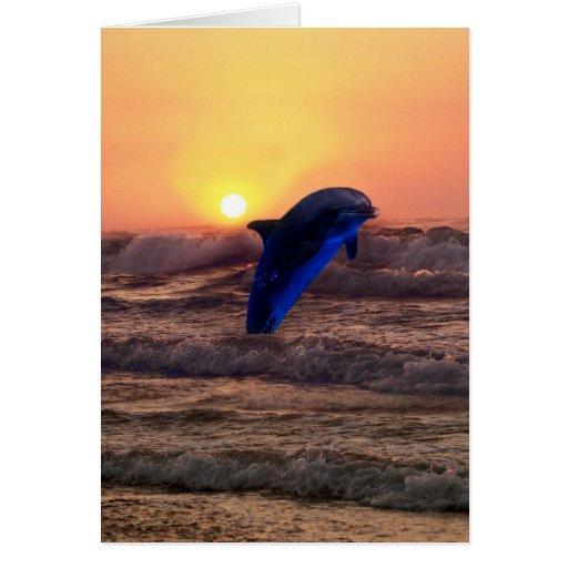 Delfín en la puesta del sol tarjeta de felicitación