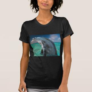 Delfín en las Bahamas Camisetas