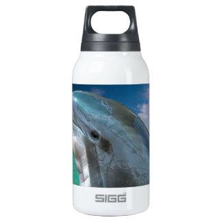 Delfín en las Bahamas