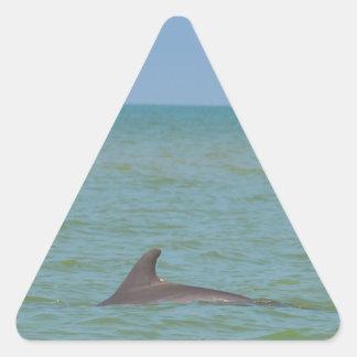 Delfín en Sanibel Pegatina Triangular