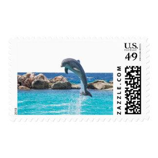 Delfín Estampillas