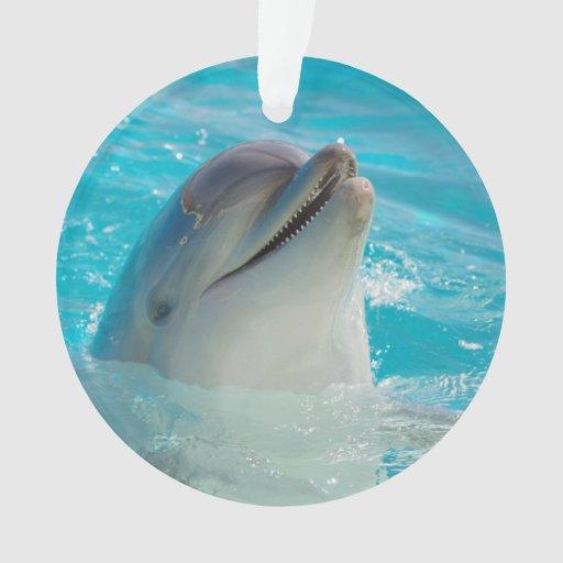 Delfín feliz de la natación