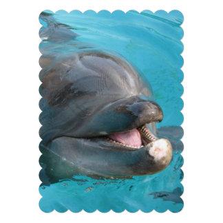 Delfín feliz comunicado personal