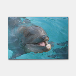 Delfín feliz notas post-it®