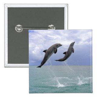 Delfin (Grosser Tuemmler) Pins