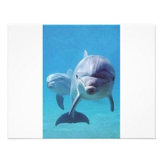 delfín II Invitacion Personalizada