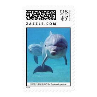 Delfín II Timbre Postal