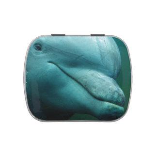 Delfín Jarrones De Dulces