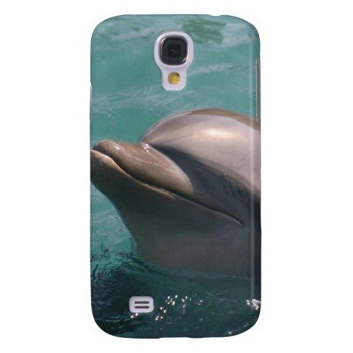 Delfín lindo