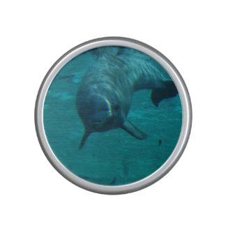 Delfín lindo altavoz bluetooth