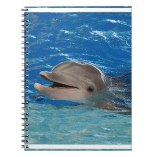 Delfín lindo del rechino libreta