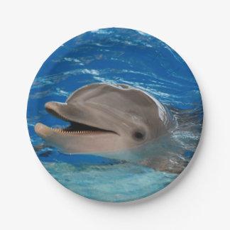 Delfín lindo del rechino plato de papel de 7 pulgadas