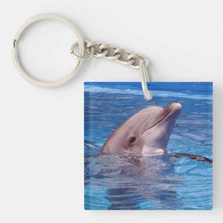 delfín llavero cuadrado acrílico a doble cara