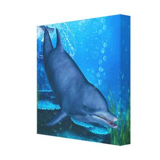 Delfín Lona Envuelta Para Galerias